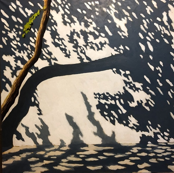 Tree. Shadow